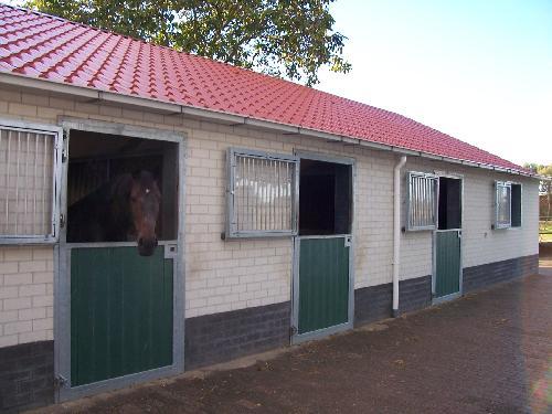De nieuwe stal
