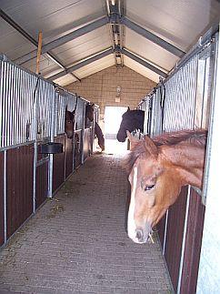 Binnenkant stal
